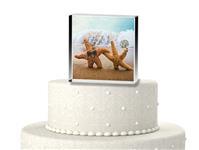 CTS9522-A perfect pair on the Beach cake topper